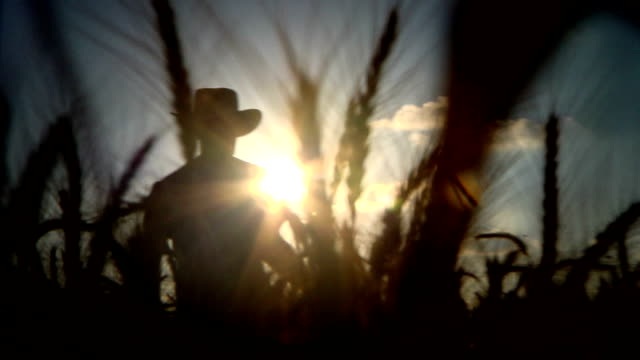farmer silhouette back video