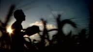 farmer silhouette side video