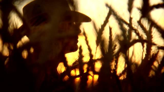 farmer silhouette sunset video