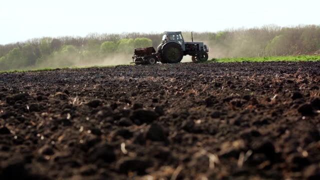 Farmer Sowing a Plowed Field With Tractor video