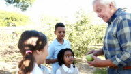 Farmer teaching a group of private elementary school students about apple farming video
