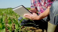 MS DS Farmer Using A Digital Tablet video