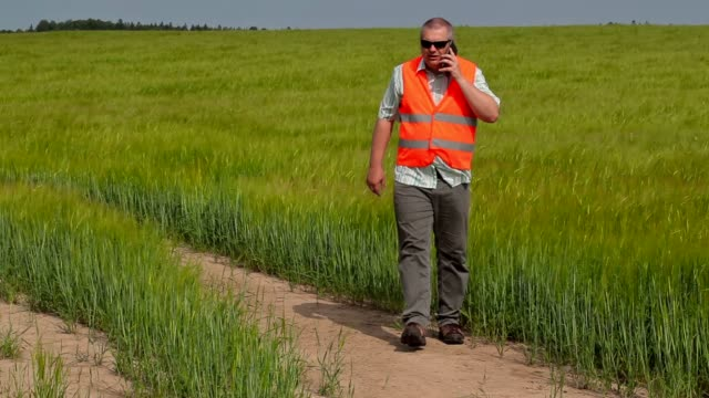 Farmer walking and talking on smart phone at cereals field video
