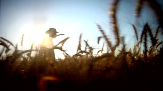farmer walking in the field video