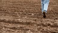 Farmer walking on farm land, planning new seeding season video
