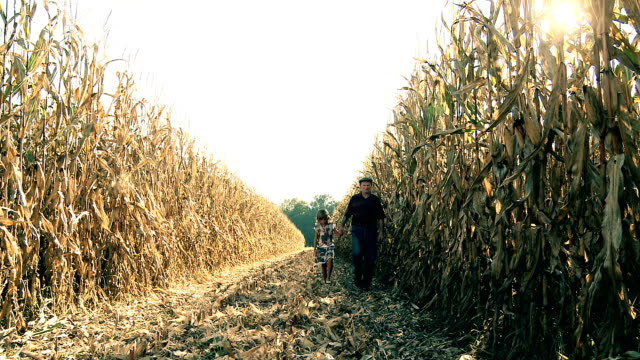 HD DOLLY: Farmer Walking With Child In Corn Field video