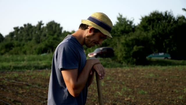 Farmer with hoe is resting while removes weeds in corn field at organic farm video