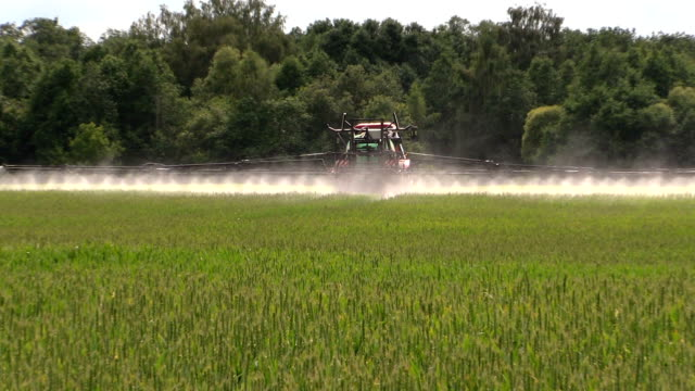 Farmer with tractor spray summer green wheat crop farm field video