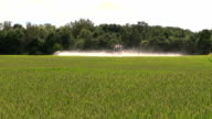 Farmer with tractor spray wheat farm field in summer video