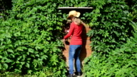 farmer woman cellar  door video