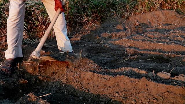Farmer working in the field using hoe video
