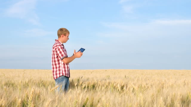 Farmer Working With Digital Tablet On the Field video