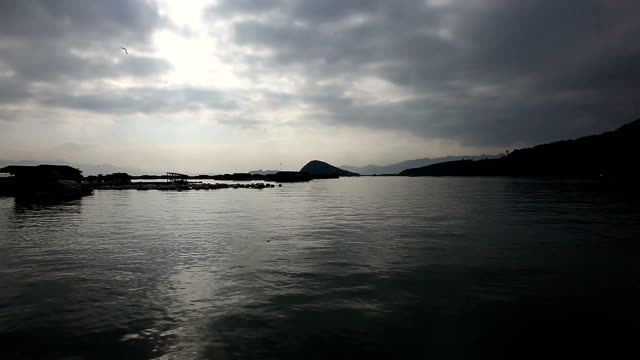 Farmers culture abalone on the sea shore, with lots of cages in the water in Xiapu, Fujian Province, They living on top of the sea. video