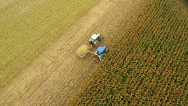 AERIAL Farmers Cutting Corn video