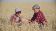 Farmer's Son and Dad video