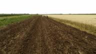 AERIAL Farmers Sowing video