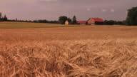 Farmhouse - Hot Summer video