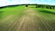 Farmland Aerial video