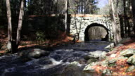 Fast Flowing River video