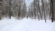 Father and son in a snowshoe trail video