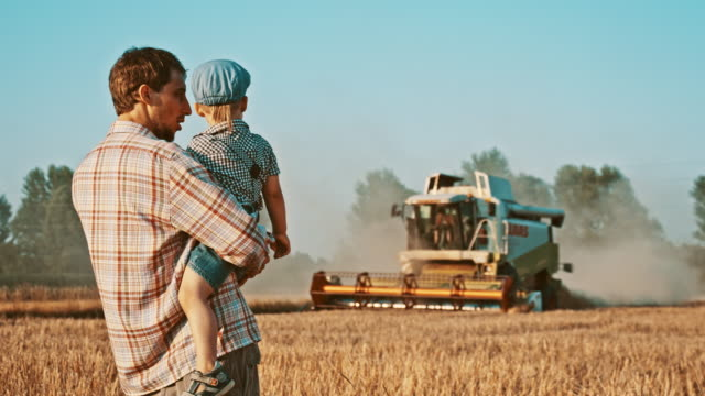 Father and son looking at the combine harvester in field video