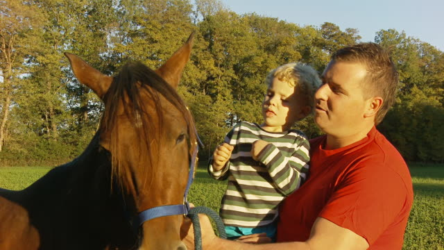 HD: Father And Son Patting A Horse video