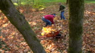 Father and son raking leaves video