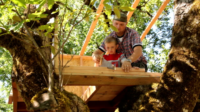Father and son working on treehouse together video