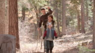 Father walking in forest with two kids, picks up a pine cone video