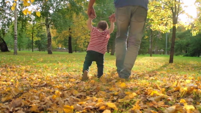 Father Walking with Little Baby in Park video