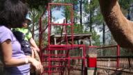 Feeding Camel video