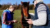 Feeding the Farm Horse video