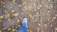 Feet walking on a park road, covered with fall leaves video