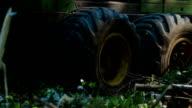 Feller Buncher drives in forest video