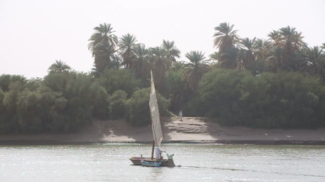 Felukka boat sailing on Nile towards riverbank video