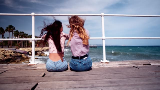 Female best friends sitting on wooden pier and embracing video