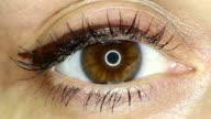 Female brown eye close-up video