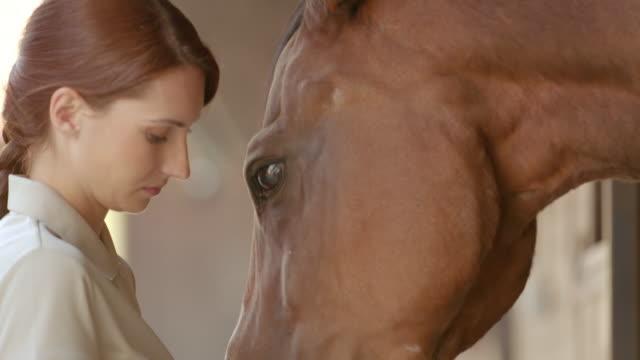 SLO MO Female caretaker giving a bay horse some treats video