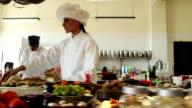 Female Chef Working In Kitchen video