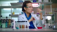 Female chemist in laboratory. Chemist analyzing chemical liquid in lab flask video
