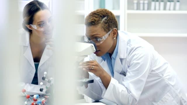Female chemists analyze a sample by using a microscope video