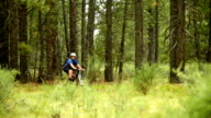 Female cyclist rides through forest video