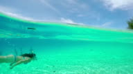 Female diver snorkeling underwater at famous Bora Bora mountain island video