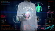 Female doctor touching digital screen,  Female body scanning blood vessel, lymphatic, heart, circulatory system in digital display dashboard. Blue X-ray view. video