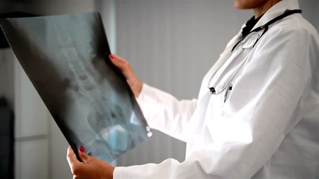 Female doctor with x-ray video