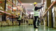Female Employee Scanning Boxes In Warehouse video