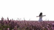 Female enjoy lavender field in Provence, France video