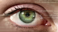 Female eye with program code. Futuristic. Technology. Green-brown. video