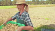 Female farmer unloading crates of produce from delivery truck video