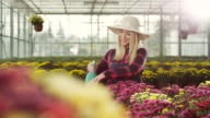 Female florist working at greenhouse video